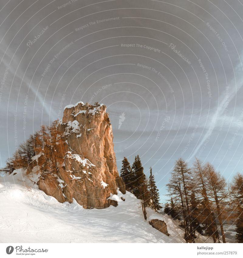 stein der weisen Natur Pflanze Himmel (Jenseits) weiß Baum Landschaft Tier Winter Berge u. Gebirge Umwelt Felsen Macht Gipfel Alpen Schneebedeckte Gipfel Berghang