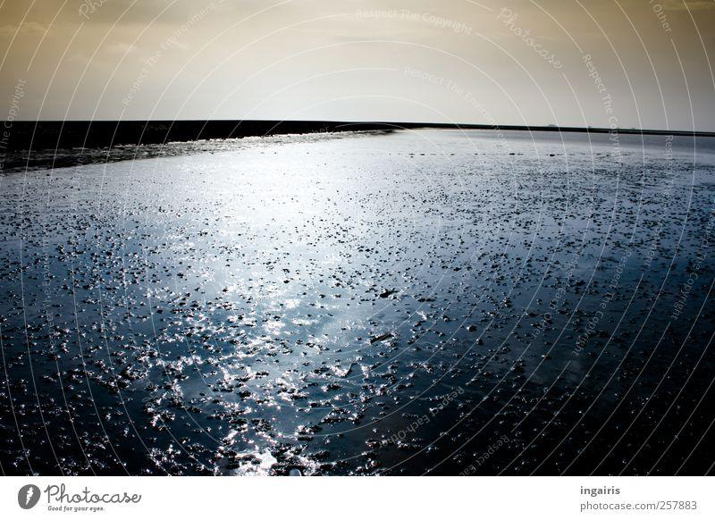 Gezeiten Himmel blau Wasser weiß Ferien & Urlaub & Reisen Meer Strand Ferne Erholung Umwelt Sand Küste Luft Stimmung braun Horizont