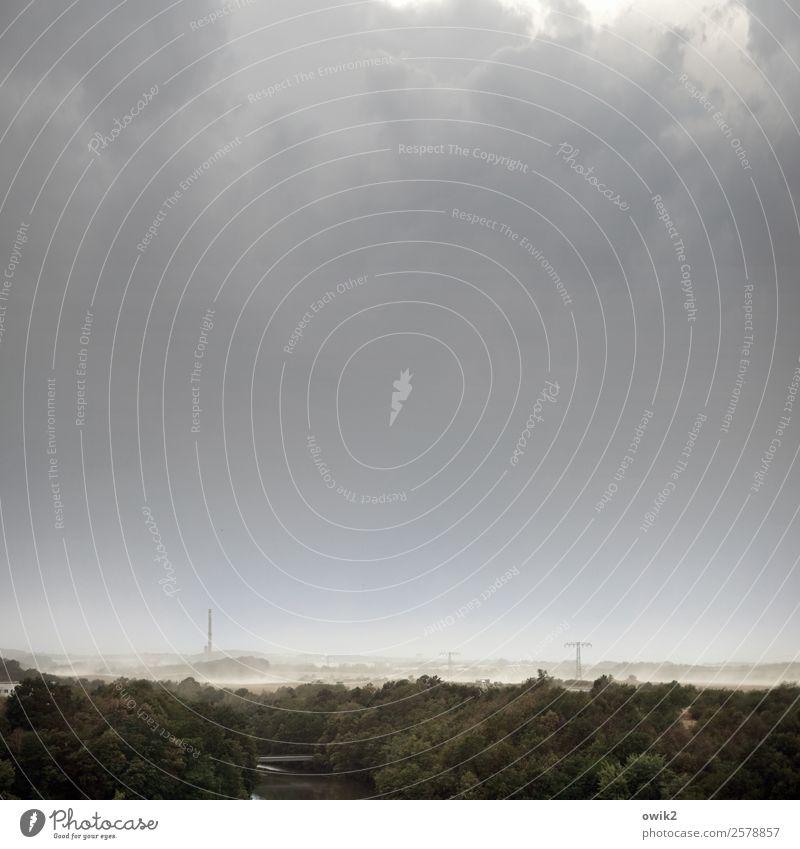 Staubsturm Umwelt Natur Landschaft Himmel Wolken Horizont Sommer Klimawandel schlechtes Wetter Wind Sturm Baum Feld Wald Lausitz Deutschland Sachsen bedrohlich