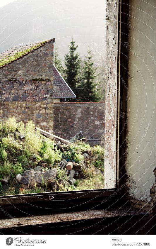 Rahmen Natur Erde Haus Mauer Wand Fassade Fenster alt braun grün Fensterrahmen Fensterblick verfallen morsch Farbfoto Außenaufnahme Innenaufnahme Menschenleer