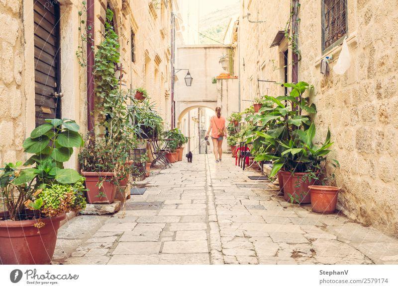Spaziergang durch Dubrovnik Mensch Ferien & Urlaub & Reisen Hund Jugendliche Junge Frau Stadt Tier Freude 18-30 Jahre Erwachsene Wand Wege & Pfade feminin