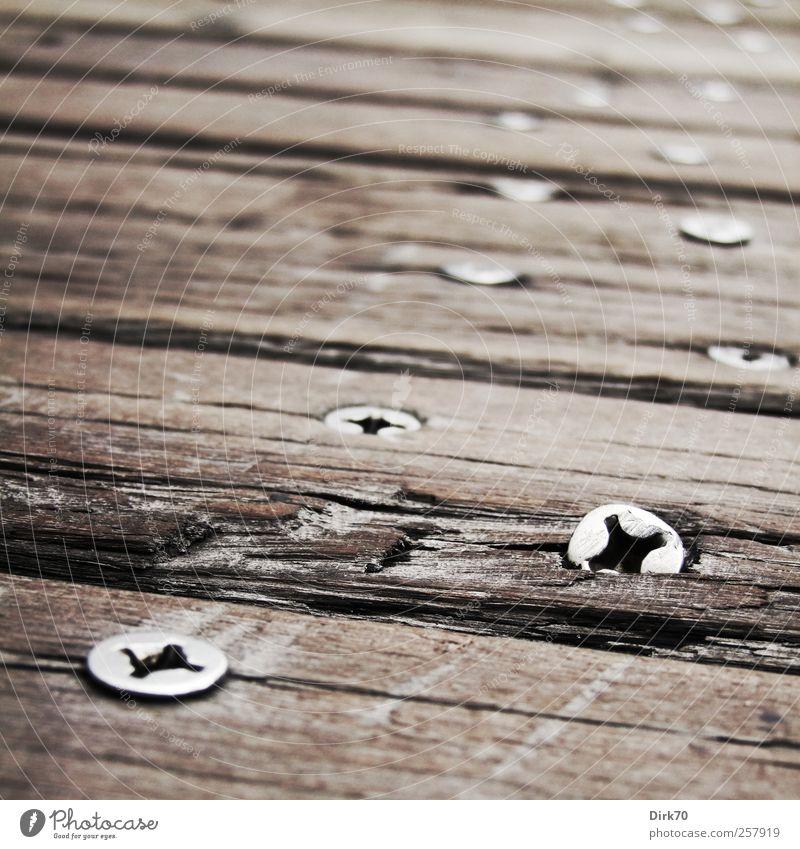 Spur der Schrauben weiß Holz grau Wege & Pfade Metall braun Brücke Industrie Sicherheit Baustelle Vergänglichkeit Fußweg Stahl Verbindung Verfall Handwerk