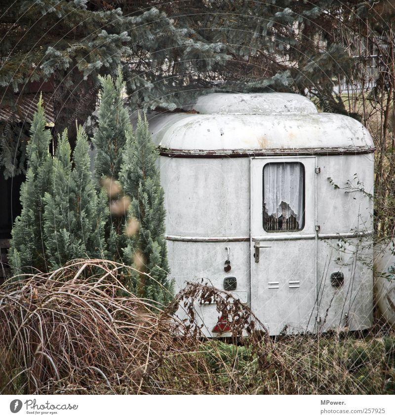 nachmieter gesucht Hütte alt Armut Wohnwagen Baum Wald einzeln Autotür Wohnung Sträucher Nadelwald karg weiß dreckig Camping Campingplatz Gardine bewachsen