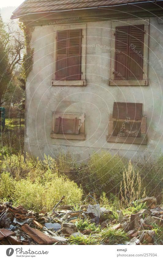 sonnig Umwelt Natur Garten Haus Einfamilienhaus Hütte Mauer Wand Fassade Fenster alt Wärme verfallen Farbfoto Außenaufnahme Tag Sonnenlicht Sonnenstrahlen