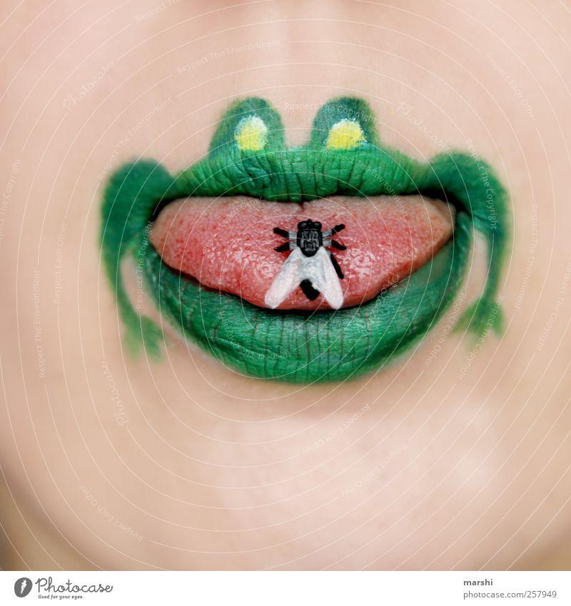 Mahlzeit! Haut Gesicht Mund Lippen Tier Frosch Tiergesicht 1 grün Fliege Zunge Nahrungssuche gefangen Farbfoto Innenaufnahme graphisch Grafik u. Illustration
