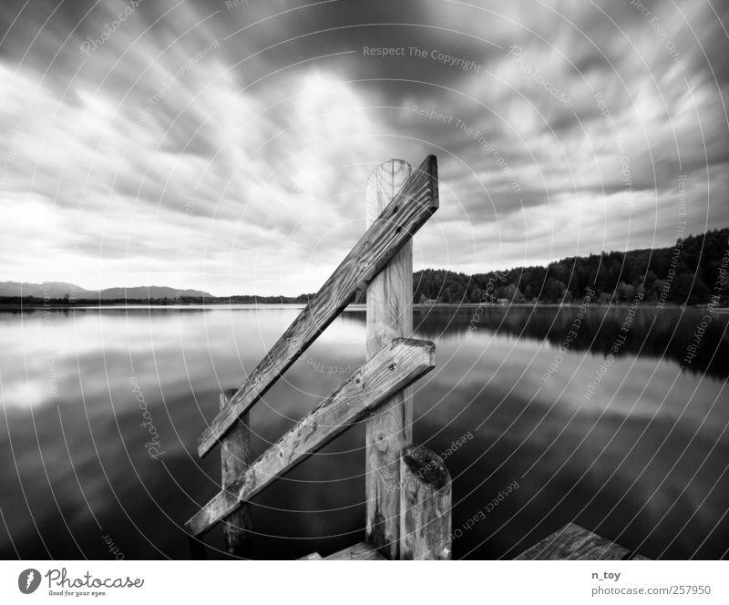 Moorsee III Natur Landschaft Wasser Himmel Wolken Herbst Wald Alpen Berge u. Gebirge Seeufer Schwimmen & Baden beobachten Denken Ferne frei grau schwarz weiß