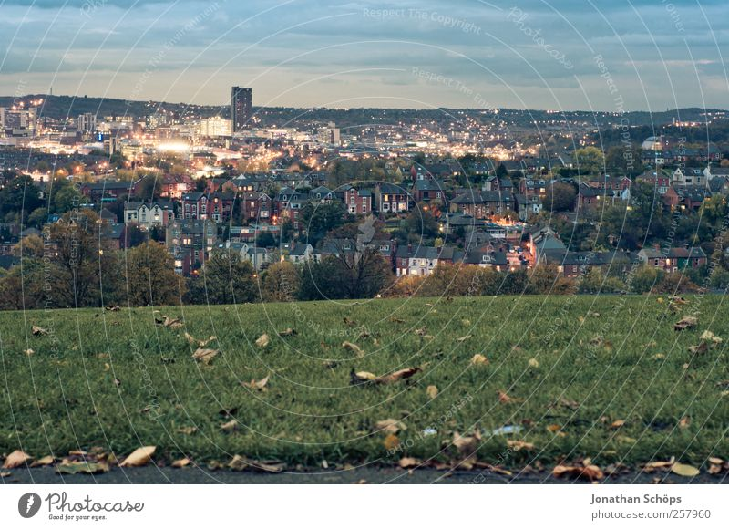 Blick auf Sheffield IV Natur Landschaft Himmel Großbritannien Stadt Stadtrand Skyline bevölkert Hochhaus blau grün Aussicht Park Wiese Haus Lichtermeer Horizont