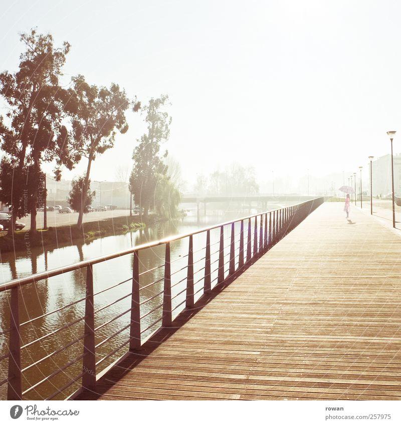 promenade, morgens Mädchen 1 Mensch Sonnenaufgang Sonnenuntergang Sonnenlicht Flussufer Bauwerk Architektur Promenade Holzfußboden Geländer Wasser Baum Sepia