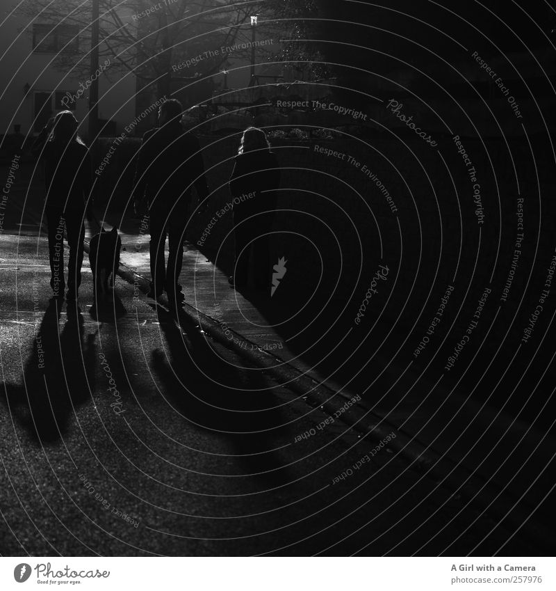 capturing the mood! Mensch Körper 3 laufen nebeneinander Hund Spaziergang Rückansicht dunkel Schwarzweißfoto Außenaufnahme Experiment Textfreiraum rechts