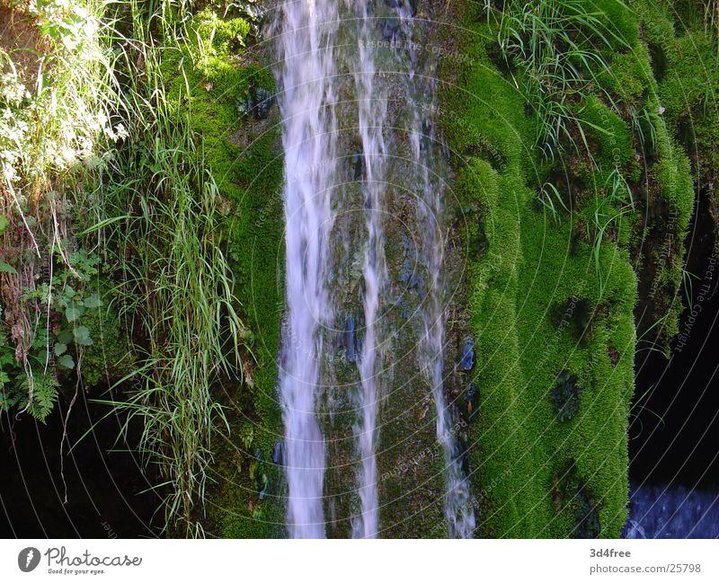 Plätscher grün Bach unberührt Einsamkeit nass Wasserfall fallen Stein Felsen Bächle Fluss Wassertropfen Natur