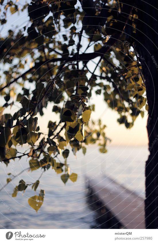 Am See. Natur ästhetisch Zufriedenheit ruhig abgelegen Gardasee Baum Anlegestelle Blatt Idylle Ferien & Urlaub & Reisen Urlaubsstimmung Urlaubsfoto Urlaubsgrüße