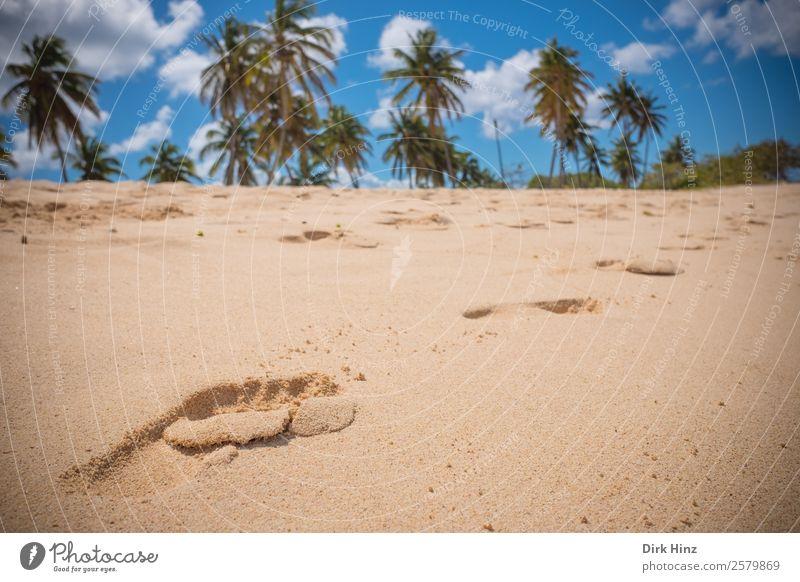 Fußspuren im karibischen Sand Himmel Natur Ferien & Urlaub & Reisen Sommer Landschaft Sonne Meer Strand Ferne Umwelt Wege & Pfade Küste Tourismus braun
