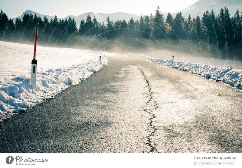 Fernbeziehung Ferien & Urlaub & Reisen Baum Einsamkeit Landschaft Winter Ferne Wald Berge u. Gebirge Straße Schnee Freiheit Eis glänzend Verkehr Tourismus