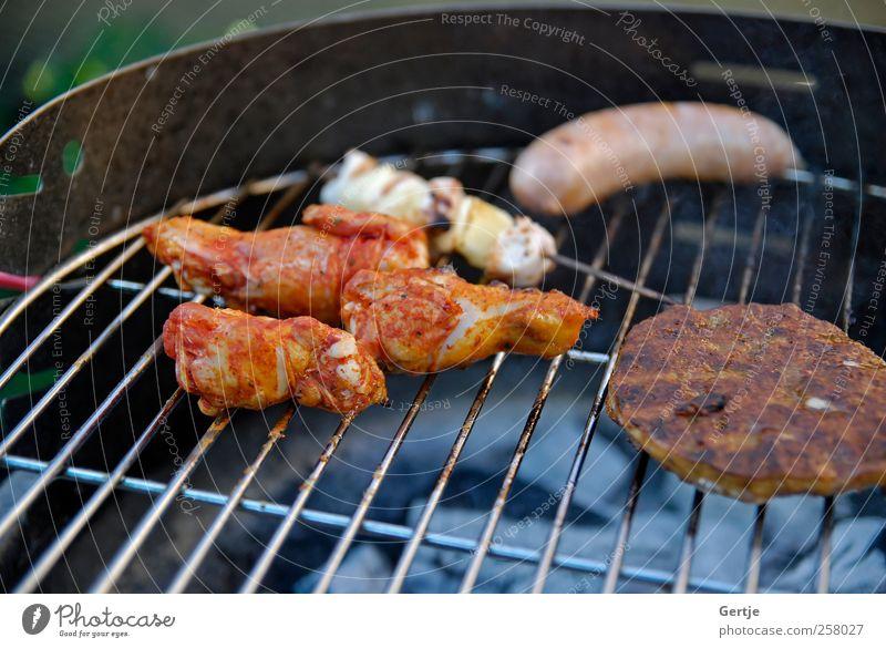 Grillparty mit Familie Fleisch Sommer Zigarettenasche Rindfleisch Hähnchen Flamme glühen Hamburger heizen Picknick Schweinefleisch Braten gebraten Shish
