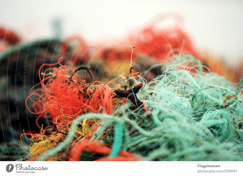 Nicht noch ein Fischernetzbild Umwelt Fischereiwirtschaft Farbfoto Außenaufnahme Tag Nahaufnahme mehrfarbig Textfreiraum oben Müll Rest Umweltverschmutzung