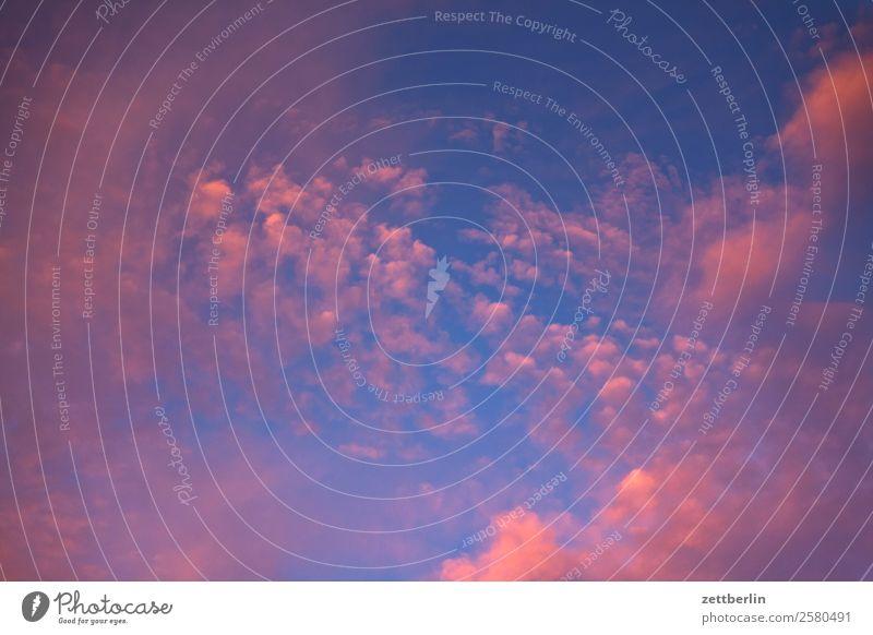 Wolken (rosa) Abenddämmerung Stimmung dramatisch Dramatik Dämmerung Farbe Farbenspiel Himmel Himmel (Jenseits) Hintergrundbild Textfreiraum Natur