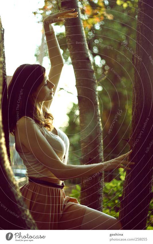 Leichtigkeit des Seins feminin Junge Frau Jugendliche 1 Mensch 18-30 Jahre Erwachsene Sommer Schönes Wetter Baum Park Rock brünett langhaarig Denken Erholung