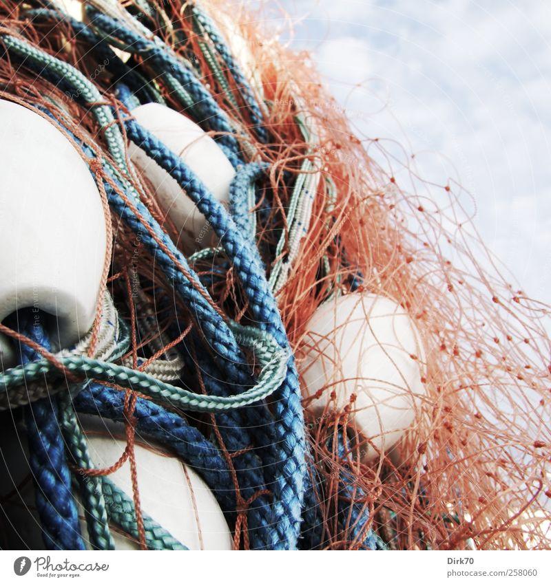 Und doch noch ein Fischernetzbild ! blau weiß rot Meer Ernährung Lebensmittel Seil Netzwerk Kunststoff Hafen Schnur fangen Jagd chaotisch
