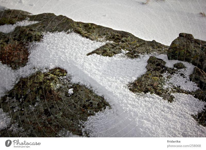 kugelschnee Winter Wetter Eis Frost Hagel Schnee Hügel Felsen Berge u. Gebirge Schneebedeckte Gipfel frieren kalt grau grün weiß Stein steinig Steinplatten