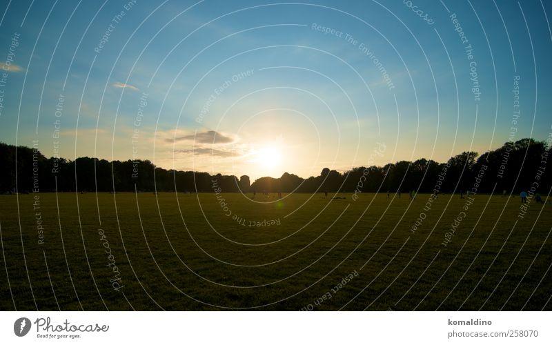 Liegewiese Himmel blau grün schön Ferien & Urlaub & Reisen Sonne Sommer gelb Erholung Landschaft Wiese Garten Erde träumen hell