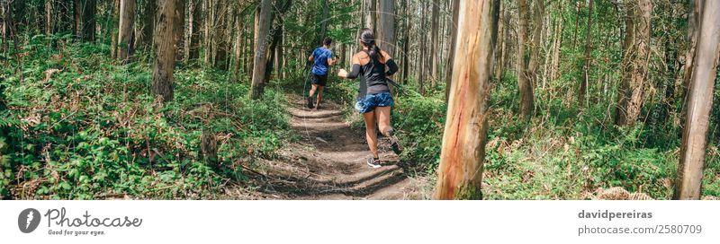Frau Mensch Natur Mann Baum Wald Lifestyle Erwachsene Wege & Pfade Sport Paar Aktion authentisch Abenteuer Fitness Geschwindigkeit