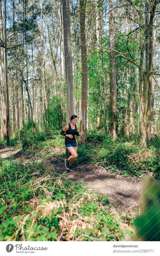 Junge Frau auf Spurensuche Lifestyle Abenteuer Sport Mensch Erwachsene Natur Baum Wald Wege & Pfade Turnschuh Fitness genießen authentisch Geschwindigkeit