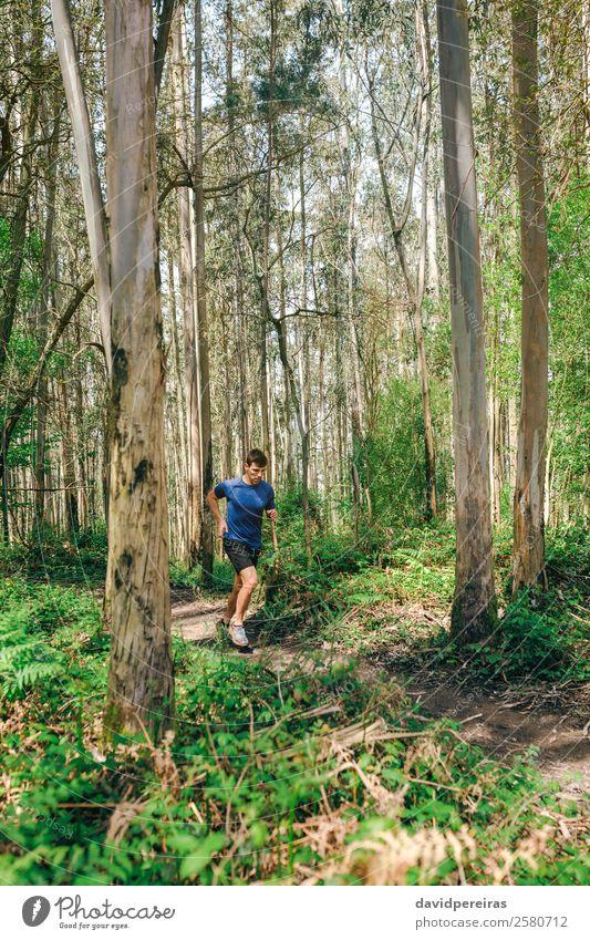 Mensch Natur Mann Baum Wald Berge u. Gebirge Lifestyle Erwachsene Wege & Pfade Sport Aktion authentisch Abenteuer Fitness Geschwindigkeit Energie