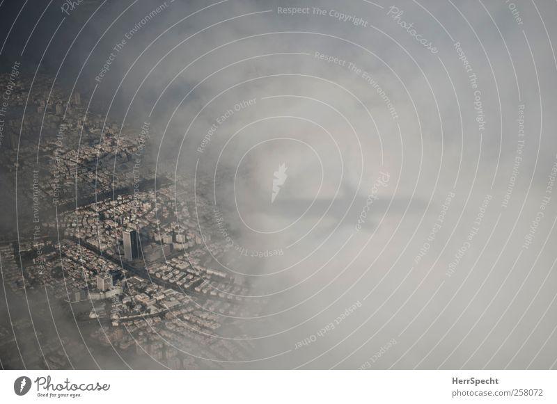 Landeanflug Wolken Tel Aviv Israel Stadt Luftverkehr Flugzeug Passagierflugzeug Flugzeugausblick fliegen weiß Landen Flugzeuglandung Farbfoto Gedeckte Farben