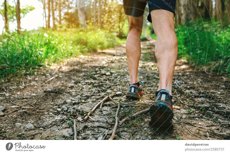 Mensch Natur Mann Baum Wald Berge u. Gebirge Lifestyle Erwachsene Wege & Pfade Sport Fuß Textfreiraum Aktion Abenteuer Geschwindigkeit Energie