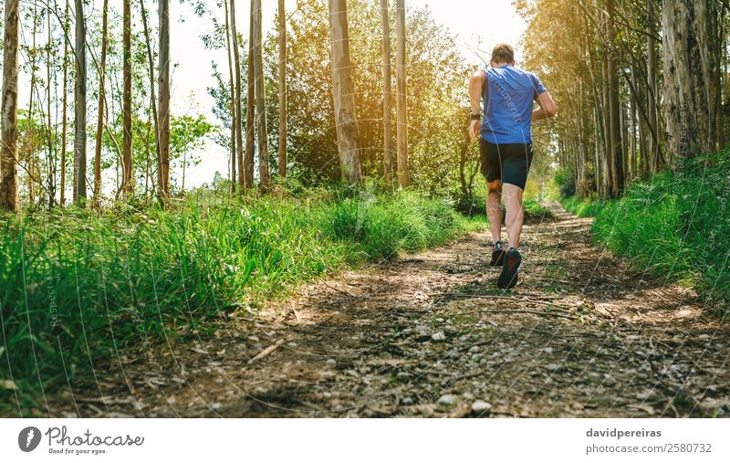 Mensch Natur Mann Baum Wald Berge u. Gebirge Lifestyle Erwachsene Wege & Pfade Sport Textfreiraum Aktion authentisch Abenteuer Fitness Geschwindigkeit