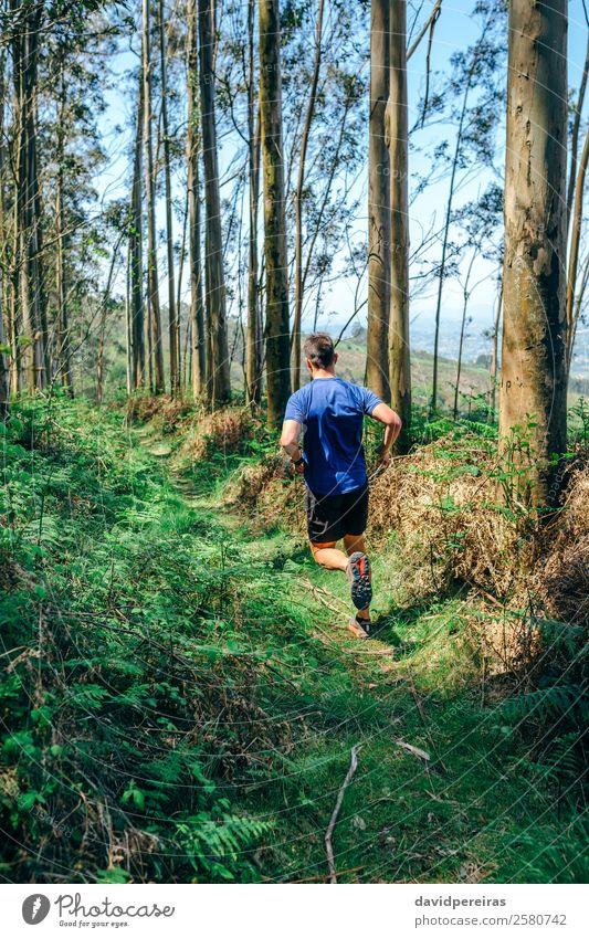 Mensch Natur Mann Baum Wald Berge u. Gebirge Lifestyle Erwachsene Wege & Pfade Sport Paar Aktion authentisch Abenteuer Fitness Geschwindigkeit