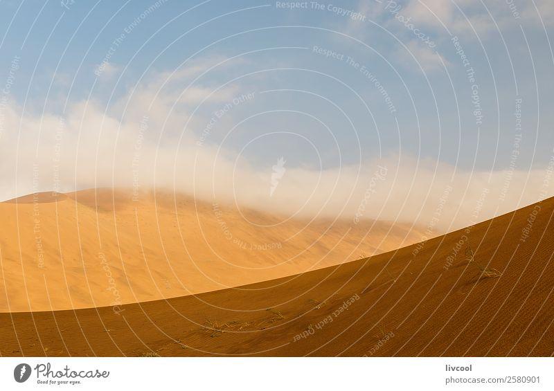 badain jaran III, china Erholung Natur Landschaft Pflanze Sand Himmel Wolken Baum Park Hügel See Ruine Einsamkeit Frieden China wüst Tarim Xinjiang uigur