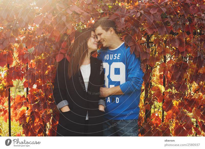 liebevolles Paar, das sich um die bunten Herbstblätter kümmert. Mensch maskulin feminin Junge Frau Jugendliche Junger Mann Familie & Verwandtschaft Freundschaft