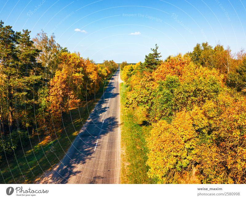 Gerade Straßenansicht von oben. Transporthintergrund Ferien & Urlaub & Reisen Tourismus Ausflug Abenteuer Ferne Freiheit Städtereise Natur Landschaft Pflanze