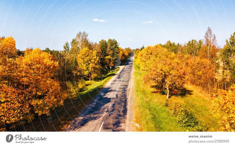 Luftaufnahme der Landstraße. Gerade Straßenansicht von oben. Ferien & Urlaub & Reisen Tourismus Ausflug Ferne Natur Landschaft Pflanze Himmel Sommer Herbst