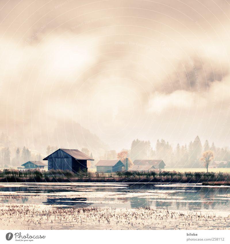 Haus am See spiegelt sich in herbstlicher Stimmung im Wasser des Lenkersees. spiegeln Umwelt Natur Landschaft Wolken Sonnenlicht Sommer Herbst Strand Schilfrohr