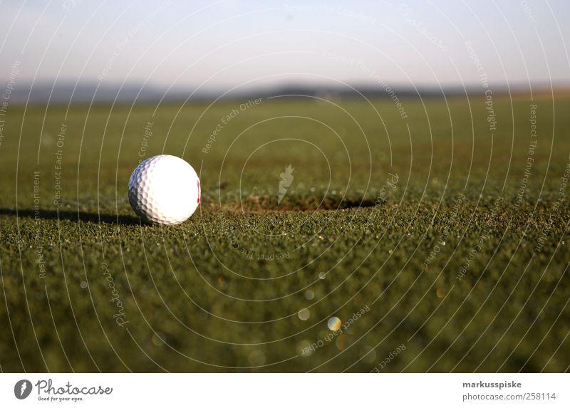 einlochen Erholung Sport Bewegung Stil Zufriedenheit Feld Freizeit & Hobby elegant Lifestyle Golf genießen Golfplatz Golfschläger Golfloch Golfball Golfer