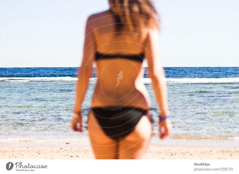 Meer Urlaub Frau Ferien & Urlaub & Reisen Meer Sommer Strand Erholung Sand Horizont Rücken Freizeit & Hobby Schwimmen & Baden Gesäß Bikini Junge Frau Sommerurlaub Bildausschnitt