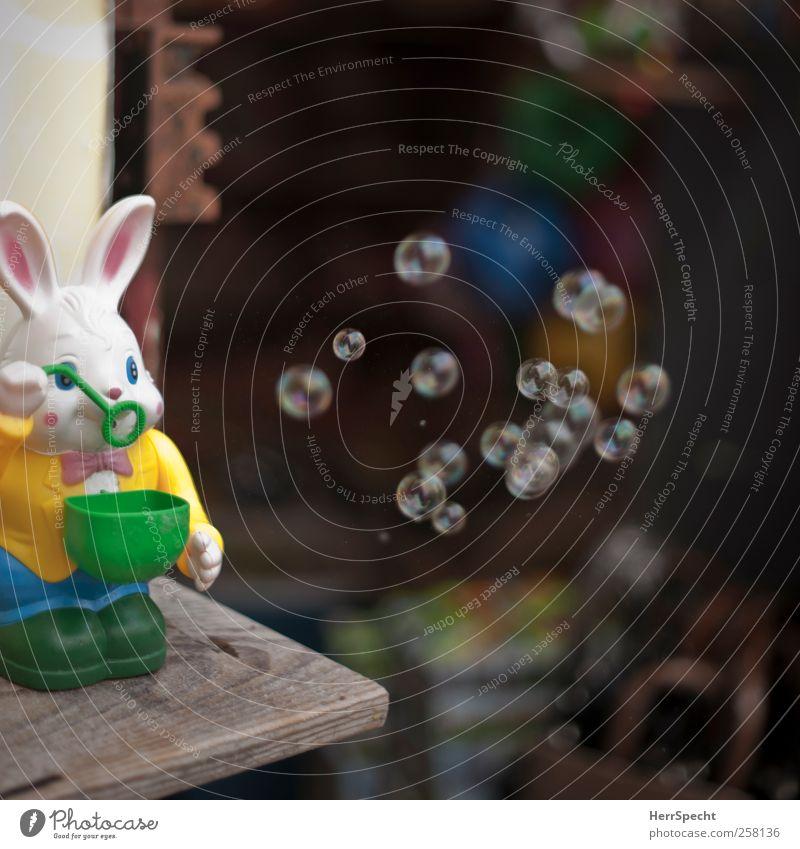 Blasehase lustig Spielzeug Hase & Kaninchen Schweben Seifenblase Automat Spielzeugladen