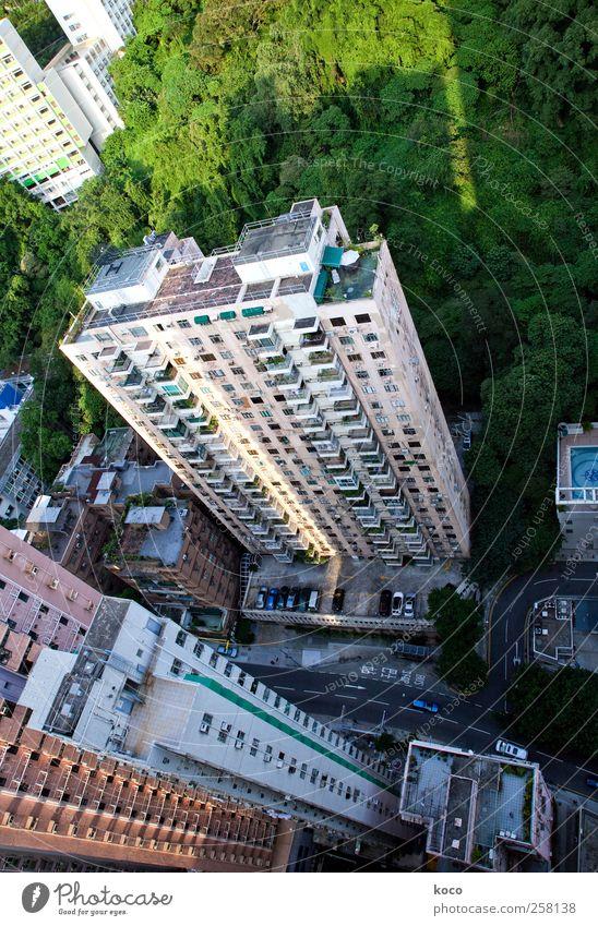 Springen? Oder nicht springen? weiß grün Stadt Sommer schwarz Straße Fenster Wand Mauer Glas rosa Beton hoch groß Hochhaus Asien