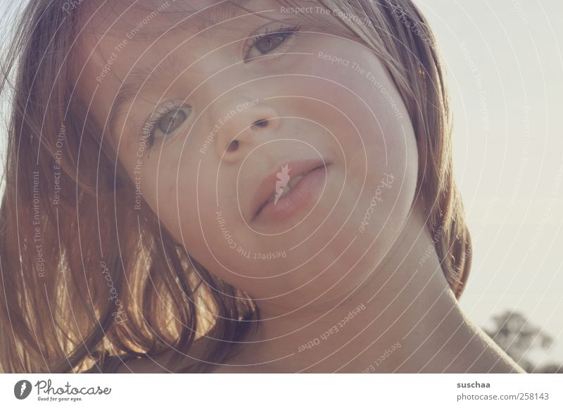 sommerkind Kind Mädchen Kindheit Haut Kopf Haare & Frisuren Gesicht Nase Mund Lippen 1 Mensch 3-8 Jahre Sommer Schönes Wetter natürlich Auge dunkelblond