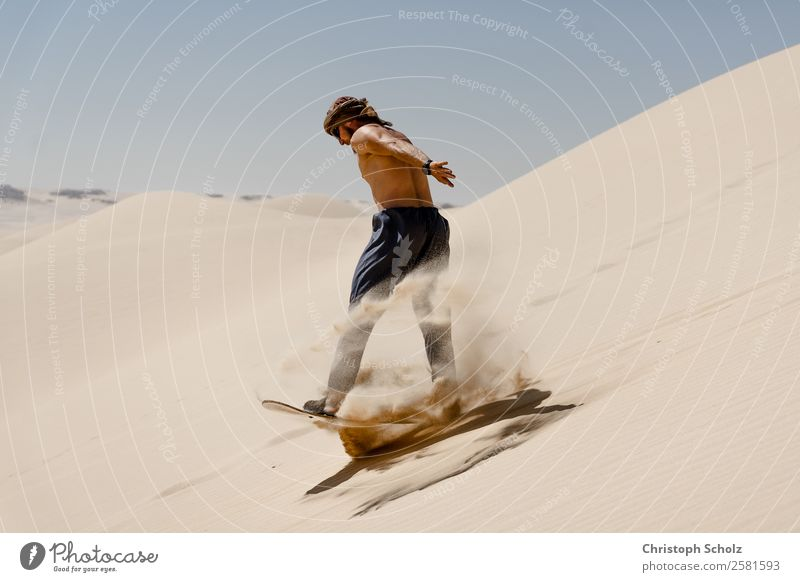 Dünenreiten Sport Fitness Sport-Training Snowboard Sandboard maskulin Junger Mann Jugendliche Erwachsene Leben 1 Mensch 18-30 Jahre Erde Wolkenloser Himmel