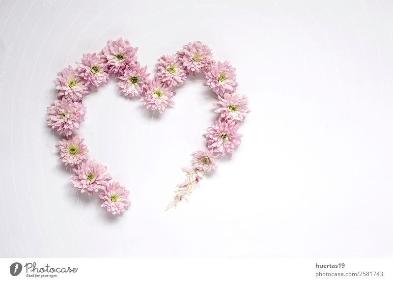 Herzrahmenmuster mit Blumen, rosa Blume elegant Stil Körperpflege Valentinstag Natur Pflanze Blumenstrauß natürlich Liebe Farbe Hintergrund Rahmen Dekor hübsch