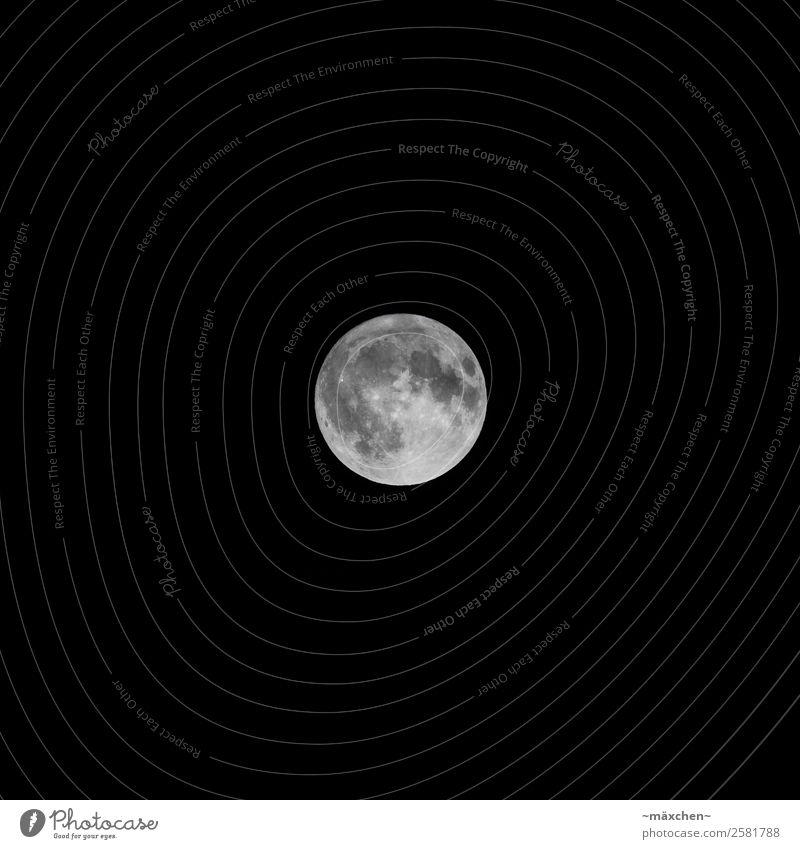Vollmond Nachthimmel Mond hell schwarz weiß Ferne Himmelskörper & Weltall dunkel beeindruckend wandernd Krater Mondkrater Kontrast deutlich Klarer Himmel