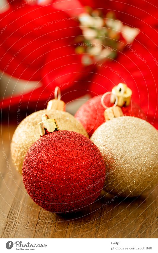 Ferien & Urlaub & Reisen Weihnachten & Advent schön Farbe rot Blume Winter Holz Glück klein Feste & Feiern Textfreiraum hell Dekoration & Verzierung gold neu