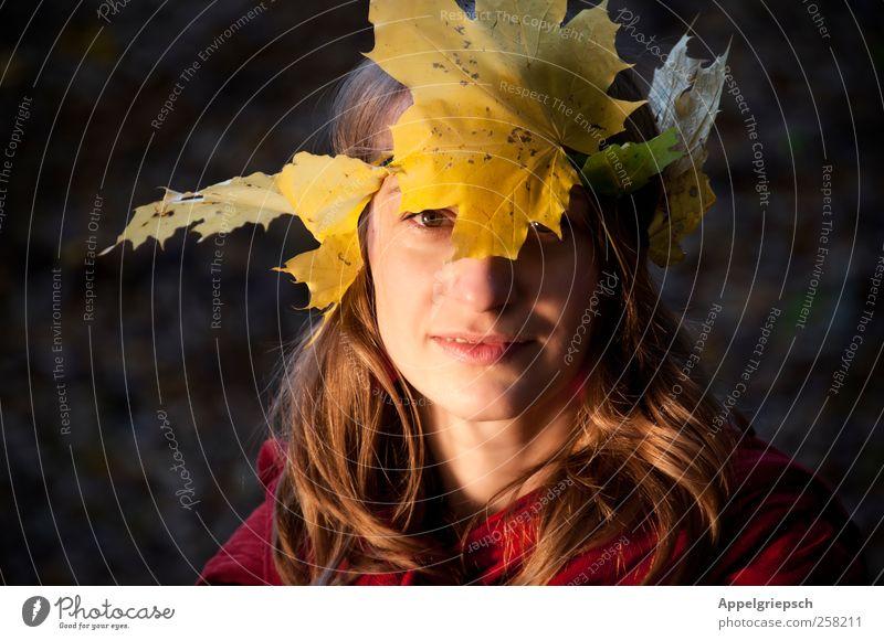 Waldwesen Freiheit feminin Frau Erwachsene 1 Mensch 18-30 Jahre Jugendliche Herbst Blatt Blätterkrone Stirnband brünett langhaarig Krone Lächeln Blick