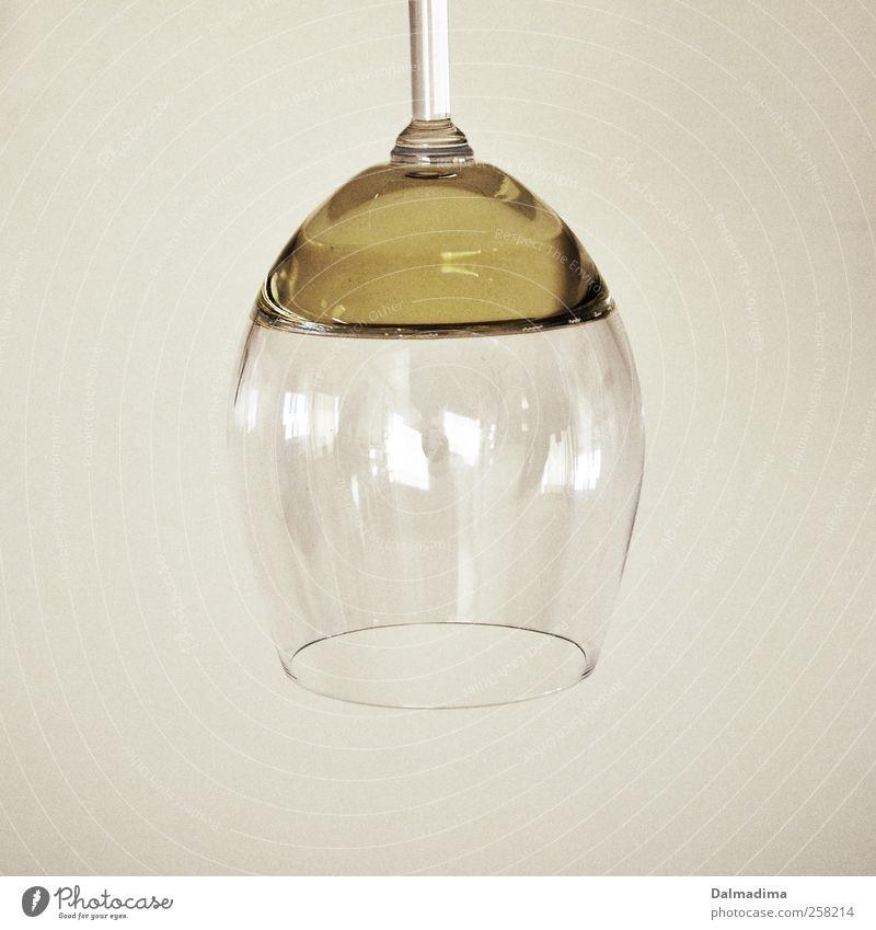 Weißwein weiß Glas genießen Getränk lecker Wein Mitte Flüssigkeit hängen Alkohol Alkoholisiert zerbrechlich Weinglas frontal Alkoholsucht Genusssucht