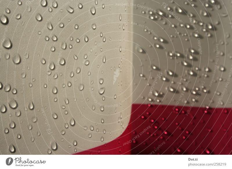 Schauer Bad Wasser nass rot Wellness Duschvorhang Wassertropfen Textilien Unter der Dusche (Aktivität) Sichtschutz hydrophob Farbfoto Innenaufnahme Nahaufnahme