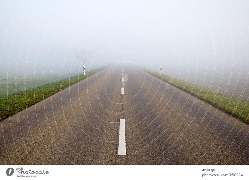 Road Straße Wege & Pfade Nebel Verkehr Zukunft fahren Verkehrswege Lebenslauf