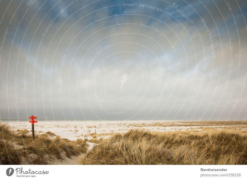 Spiekeroog | meine Erinnerungen Himmel Natur Ferien & Urlaub & Reisen Meer Strand Wolken Einsamkeit ruhig Ferne Erholung Landschaft Freiheit Gras Sand Stimmung